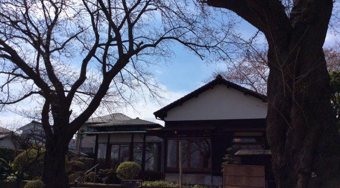 本日なごみ邸観桜会